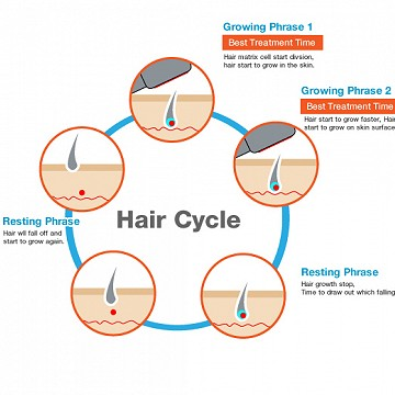 Do you know that Hair growth is not a continuous process but it has three phases ?