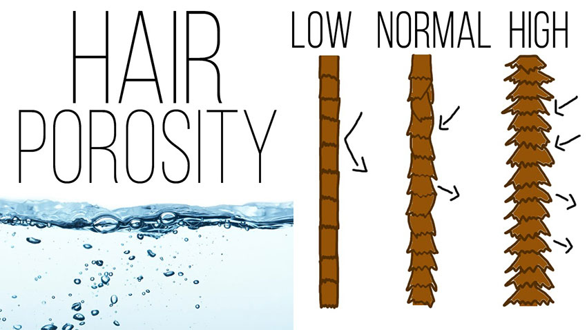 KNOWING YOUR HAIR POROSITY IS THE KEY TO HEALTHY & LUSCIOUS HAIR