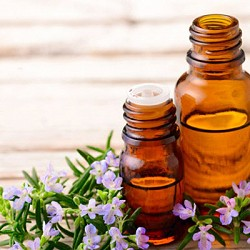 What Are the Benefits of Rosemary Oil for Hair Growth?